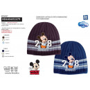 Mickey - multi composition hat