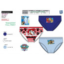 wholesale Licensed Products: Paw Patrol - box of 3 briefs 100% coton