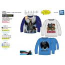 Großhandel Fashion & Accessoires: Dragons - Langärmeliges T-Shirt 100% ...