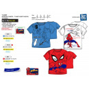 SPIDERMAN - t-shirt manchette courtes 100% coton
