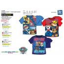 hurtownia Produkty licencyjne: Paw Patrol - krótki T-Shirt 100% bawełna