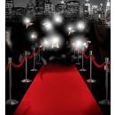 groothandel Tapijt en vloerbedekking: red carpet 460x60 cm, hoedmaat: 0