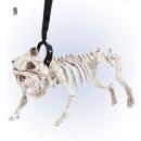 wholesale Pet supplies:  skeleton dog with leash  45 cm