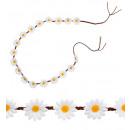 ingrosso Orologi da polso: Cintura fiore Daisy 140 cm, misura cappello: 0