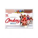 cowboy makeup set (4 makeup sticks, skin & brown