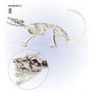grossiste Articles de fête: squelettes de rat  38 cm