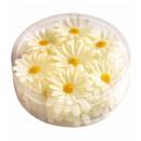 groothandel Accessoires & Onderdelen:  doos van 20  decoratieve Daisy bloemen  voor decor