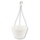 wholesale Plants & Pots: Hanging Basket  Petunia, d = 20cm, white