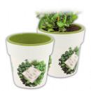 wholesale Plants & Pots: Herbal pot with  IML, d = 12cm, rim removable,
