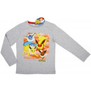 Pokemon, boy's long sleeve shirt.