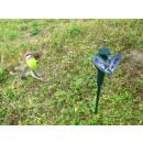Solar Hummingbird