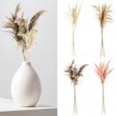 groothandel Kunstbloemen: Pampagras, stijl 2, 4- maal geassorteerd klein ...