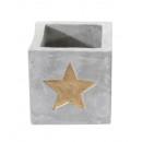 grossiste Plantes et pots: Cache-pot Golden Star , petit, 9x9cm