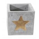 hurtownia Ogrod & Majsterkowanie: Donica Golden Star duża, 12x12cm