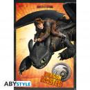 DRAGONS - Poster Dragon Master (98x68)*