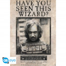 HARRY POTTER - Poster «Wanted Sirius Black» (91.