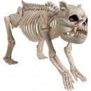 Dog skeleton graveyard