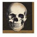 Großhandel Haushaltswaren: 20 Servietten Boneyard 33 x 33 cm