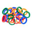 Schlüsselanhänger 20 Stück Farbe
