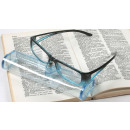 wholesale Drugstore & Beauty: Reading glasses  panama + transp. sleeve / 25 piece