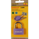 wholesale Garden & DIY store: Padlock 32 mm action / mixed color