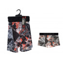 boxer shorts man, tokyo division