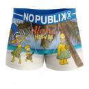 boxer shorts man, aloha