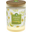 wholesale Candles & Candleholder: Airways mood candle honey melo.