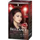 wholesale Other: brillance color burgundr.bi923