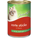 Everyday cat wild + poultry. + kar.sc415g can