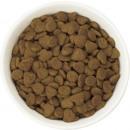 Beyond dry beef 1.4kg cat bag