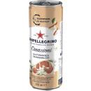 ingrosso Altro: san Pellegrino creat.bluto. 0.33l lattina
