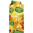 Großhandel Nahrungs- und Genussmittel: Pfanner a + c + e mehrfrucht 2l pk
