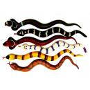 Caoutchouc serpents 38 cm - en Display