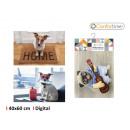 wholesale Carpets & Flooring: carpet 40x60cm pets 3s digital confortime