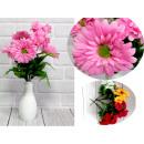 Csokor 7 gerberavirágból (magasság 40 cm, virág 9,