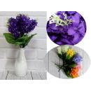 Giacinto bouquet 5 steli (altezza 32 cm)