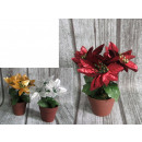 Poinsettia Bouquet 4 fiori in vaso 20x10 cm