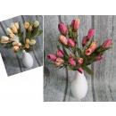 Csokor pasztell tulipán 6 szál (33 cm magas, sq