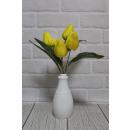 Mazzo di tulipani 5 fiori (altezza 34 cm, fiore 6,