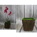 groothandel Tuin & Doe het zelf: Pot bekleed met schuimplastic inzetstuk mche