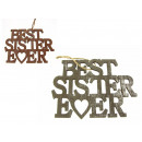 Wooden sign of best sister ever - Vintage (20x15
