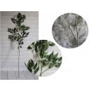 Ramo d'ulivo (verde, bianco) 120 cm - 1 pezzo