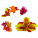 Orchidea fiore testa 8 filo cm impostato 4