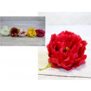 wholesale Artificial Flowers: Flower head, peony 10x6 cm - 1 pcs
