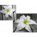 wholesale Other: The head of the product lily lily 18 - whitemint -