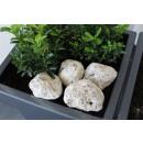 Kalcium díszítő kövek 7-8 cm 4 db