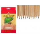 ingrosso Articoli da Regalo & Cartoleria: Jumbo natur 12 matite colorate