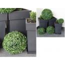 wholesale Plants & Pots:21 cm green boxwood ball
