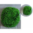 Light green boxwood ball 32 cm